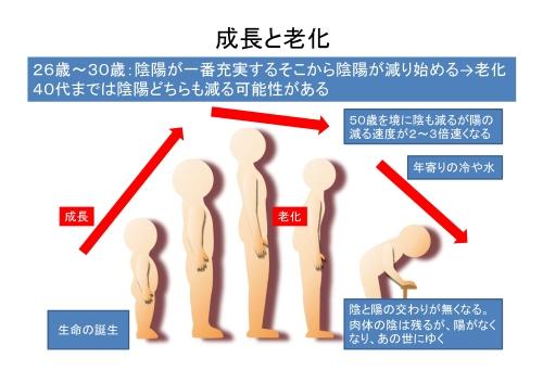 成長と老化-2-1
